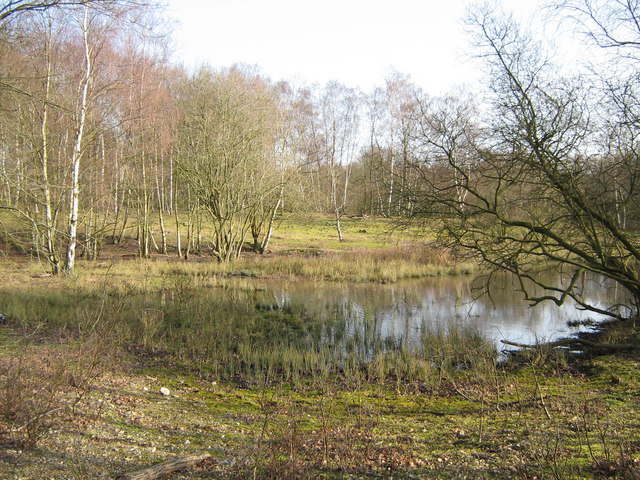 A pond at Greenham Common by George Evans via geograph.org.uk